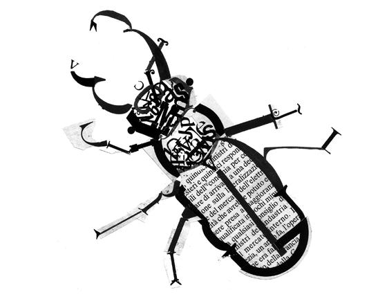Livre d'artiste. Bzzz... Insectes et typographie. détail : cerf-volant, lucane © Florence Boudet