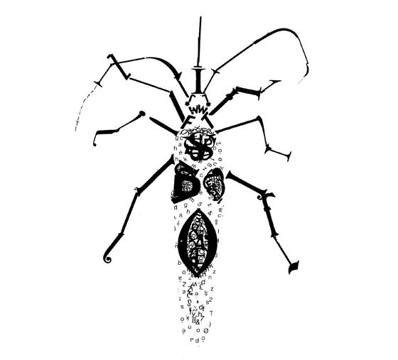 Livre d'artiste. Bzzz... Insectes et typographie. détail : charançon longicorne © Florence Boudet