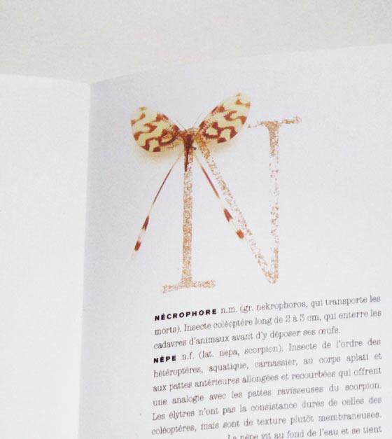Détail lettrine, dictionnaire des insectes. © Florence Boudet