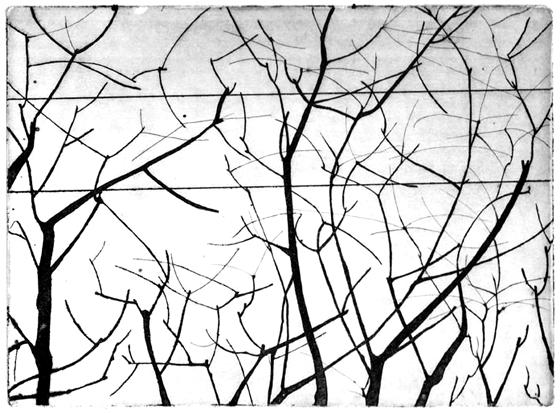 Gravure taille douce sur zinc imprimée, paysage cartographique à Milan : arbres et fils électriques. © Florence Boudet