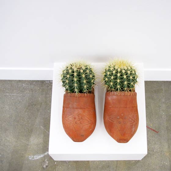 nantes - lieu unique - lu - théo mercier - le grand mess - chaussons de la douleur - slippers of pain - clogs - cactus