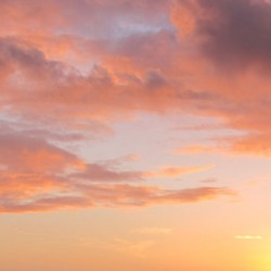10/02/2010 - 18:06 - Arradon, Bretagne