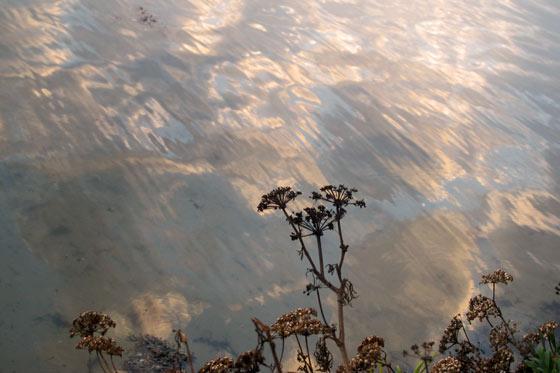 Golfe du Morbihan, soir de novembre © Florence Boudet