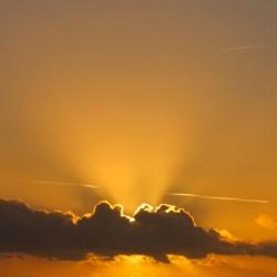 27/12/2011 - 17:32 - L'île aux Moines, Bretagne