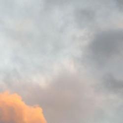 29/12/2009 - 17:03 - Versailles. île de France