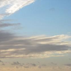 05/11/2011 - 18:02 - Port-Blanc, Bretagne
